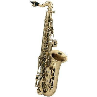 Sassofono alto in Sib per bambini Roy Benson AS-201