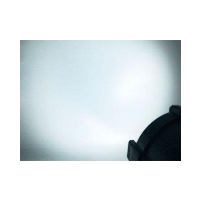 Atomic Pro Faro Fenice 50Cob COLD/WARM White