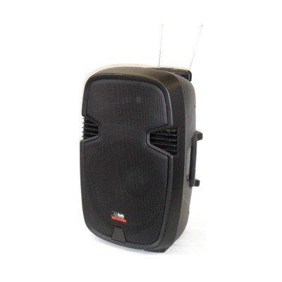 AudioDesign Pax1 15 W/L - Cassa attiva a Batteria con 2 Radiomicrofoni
